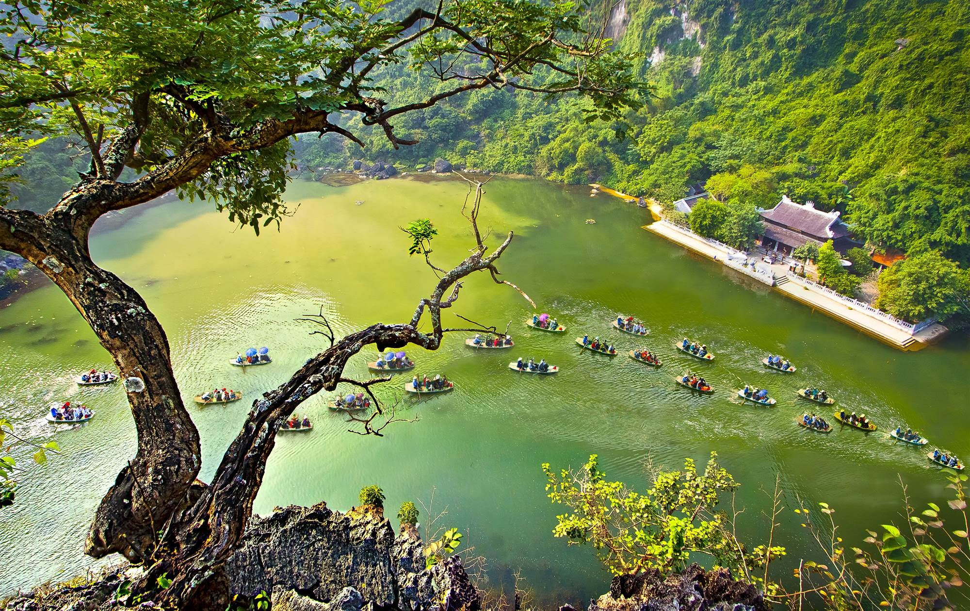 Bai Dinh - Trang An Eco One Day Tour