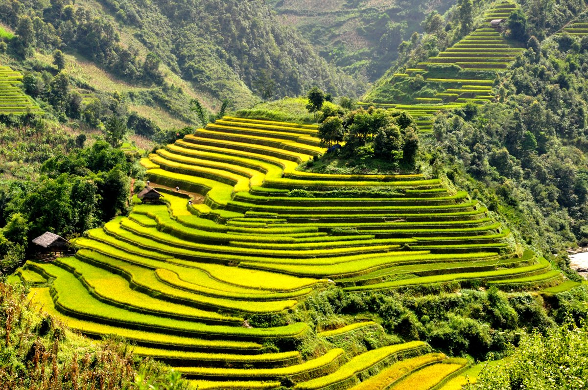 Questions of tourist when travelling in Mu Cang Chai